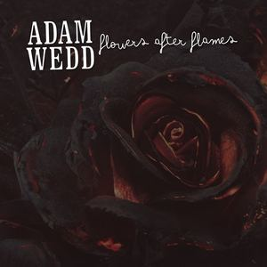 Adam Wedd - Flowers After Flames