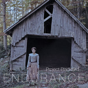Project Blackbird - Elevation