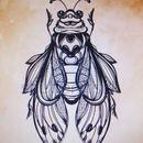 Rasha Jay - Cicada
