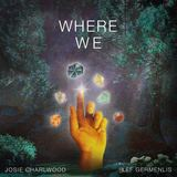 Where We (Josie Charlwood)