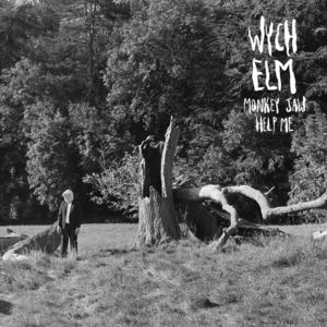 wych elm - Monkey Jaw