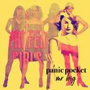 Panic Pocket - Mr Big