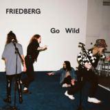 Friedberg - Go Wild