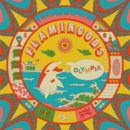 Flamingods - Olympia