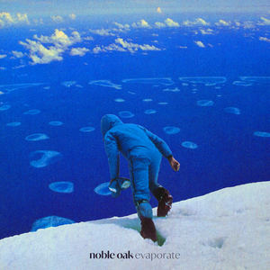 Noble Oak - Evaporate