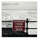 Misfortune Cookie - Heavy Seas
