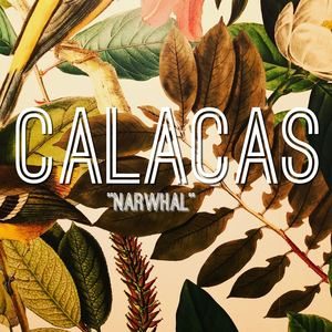 Calacas - Narwhal