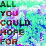 HAMER - All You Could Hope For