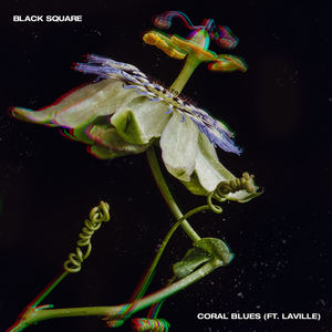 Black Square - Coral Blues feat. Laville (Throwing Snow Remix)