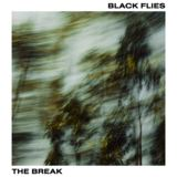 BLACK FLIES - One