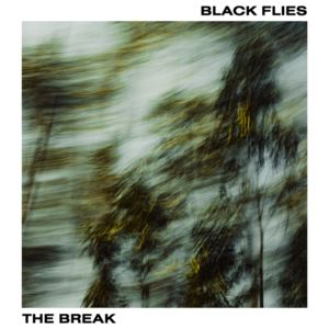 BLACK FLIES - The Break