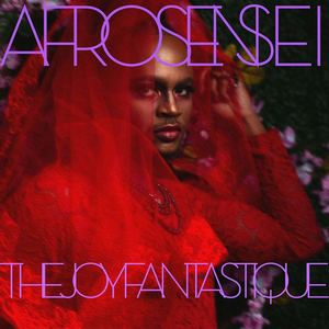 Afro Sensei  - The Joy Fantastique
