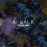 Lunar Bird - A Walk