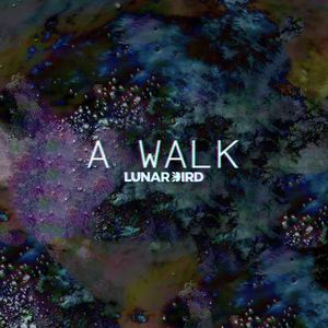 Lunar Bird - A Walk