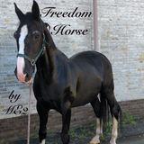 ME2 - Freedom Horse