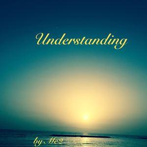 ME2 - Understanding