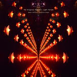 The Original Magnetic Light Parade - Confusion Reigns