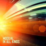 Modual - In All Kinds