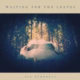 Nic Evennett - Waiting For The Leaves