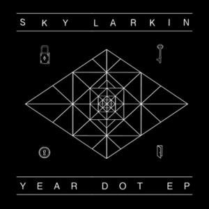 Sky Larkin
