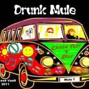 Drunk Mule - Crash Test Y'self
