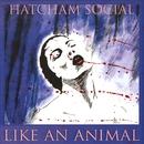 Hatcham Social - Animal