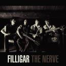 Filligar - Health