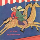 Ambiguous Records - Mr David Viner - Go Home
