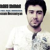 Hessam Hessamyan© - Shako Shobhe