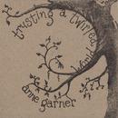 Anne Garner - Trusting a Twirled World