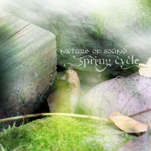 nature of sound - spring cycle
