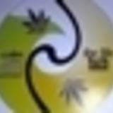 puffpaddy - pot