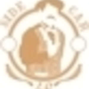 Sidecar 46 - Bears...
