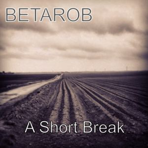 BetaRob - A Short Break
