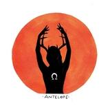 Corvid Hill - Antelope