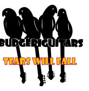 Budgeriguitars - TEARS WILL FALL