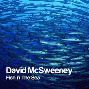 David McSweeney - Fish In The Sea