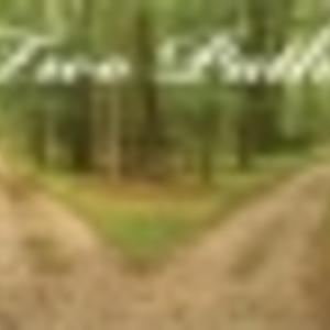 In$@n3 - Path I Choose
