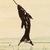 Hilang Child - The Garth Waterman