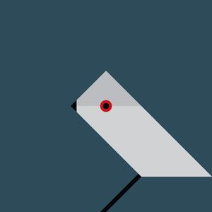 Dans & Lær - Grey Warbler