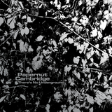 Papernut Cambridge - Papernut Camridge - There's No Underground