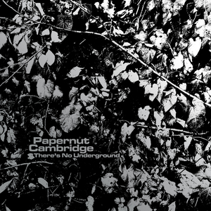 Papernut Cambridge - Papernut Camridge - There's No Underground