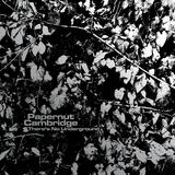 Papernut Cambridge - Nutflake Social