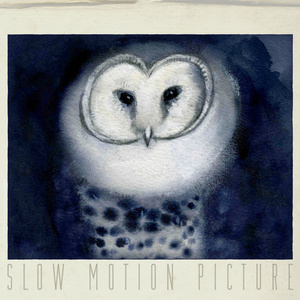 Slow Motion Picture - Hideout