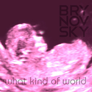 Brynovsky - What Kind of World