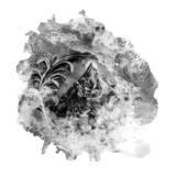 Dani Charlton - Label Profile: In Conversation with Sofia Ilyas of Erased Tapes