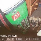 WOAHNOWS - Sounds Like Spitting