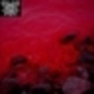 Neverchrist - The Graveyard