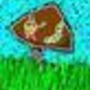 mutt - Mushroom Man