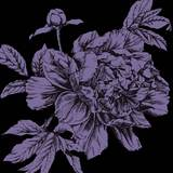 EvanIvan - Purple Flowers